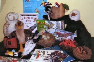 Learn all about birds. Contains a bird identification book, a teacher's hand-book with activities, binoculars, a bird feeder and seeds, glider, and puppets.