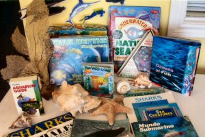A very popular kit. Includes books, giant floor puzzles, felt fish and underwater scene, games, plastic ocean collection, large underwater plant, water and sand play, puppets.